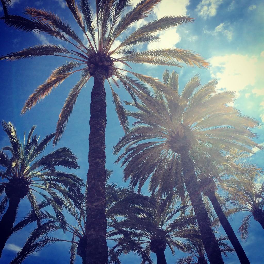 5 tips voor een relaxte vakantie