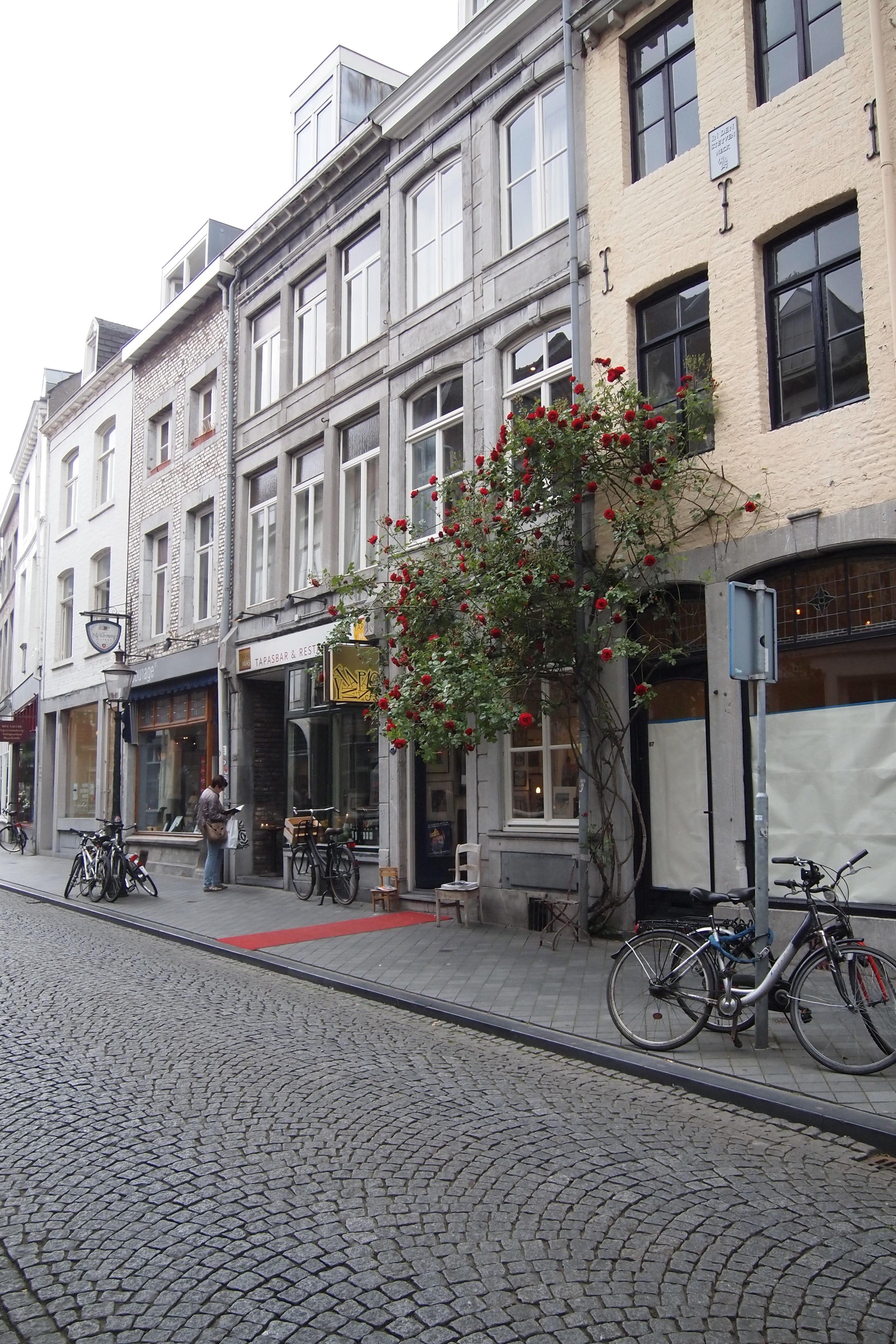 Groene Hotspots In Maastricht De Groene Meisjes