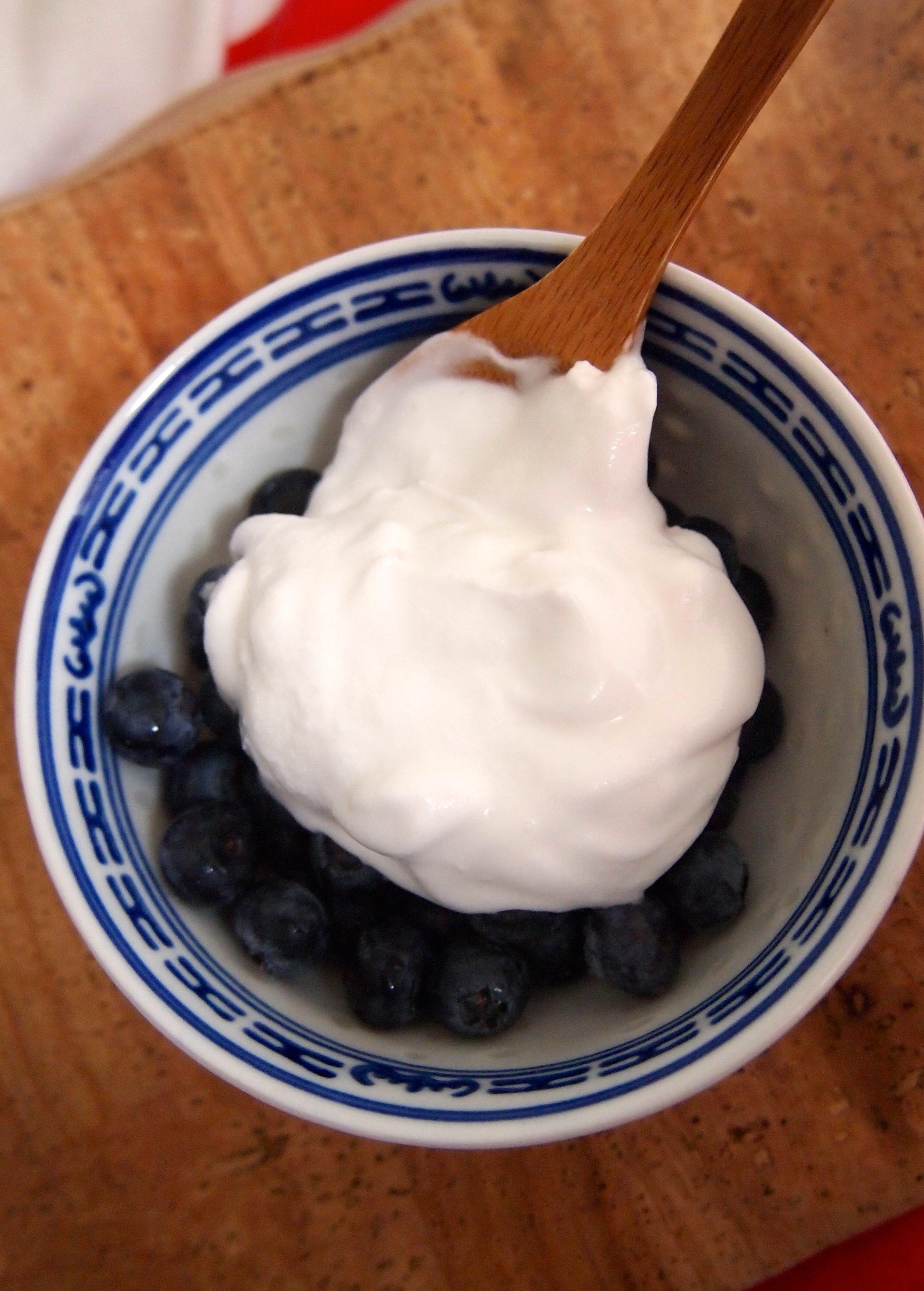 ontbijt mogelijkheden met griekse yoghurt
