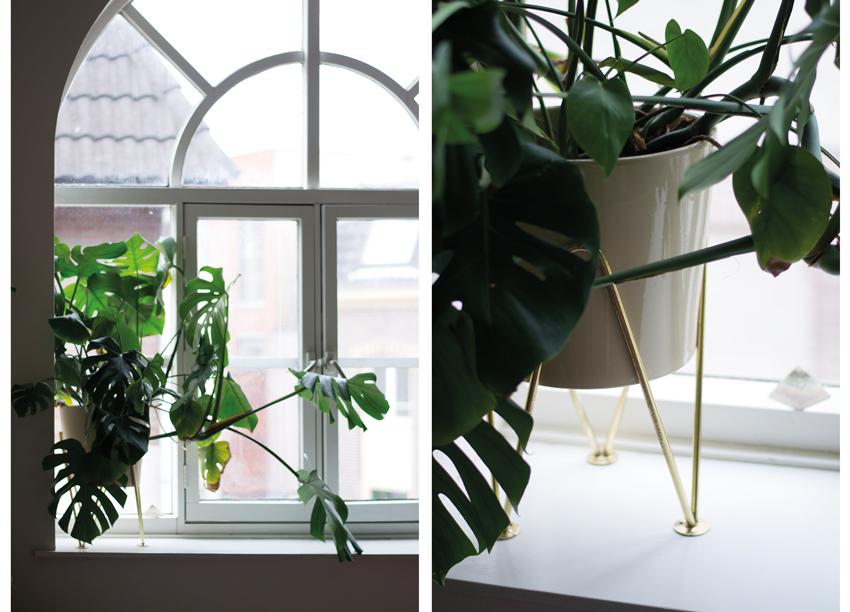Tweeluik-vingerplantpot