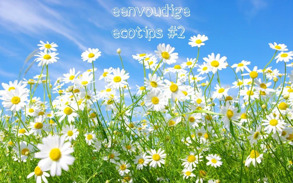ecotipsdeel2